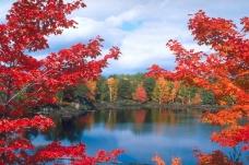 秋天景色0155
