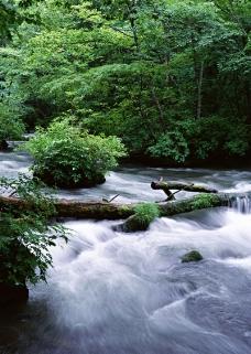 溪流水源0482