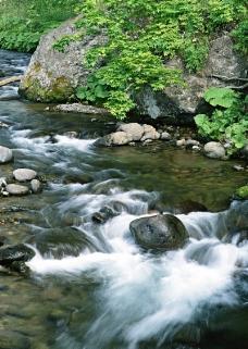 溪流水源0483