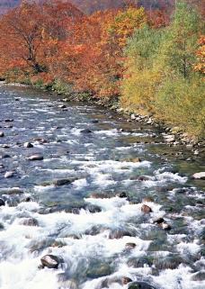 溪流水源0488
