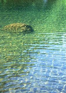 溪流水源0479