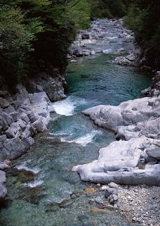 溪流水源0481