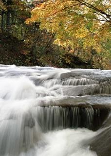 溪流水源0477
