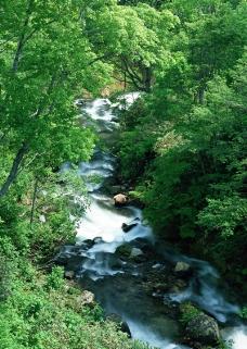 溪流水源0484