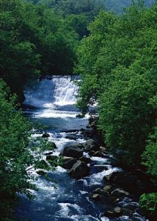 溪流水源0486