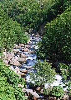 溪流水源0485