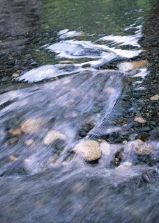 溪流水源0478